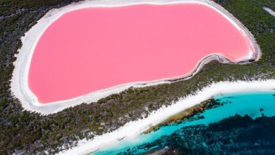 تعرف علي بحيرة هيلير ذات اللون الوردي في استراليا